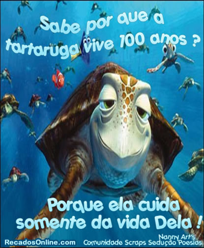 Humor com Animais Imagem 10