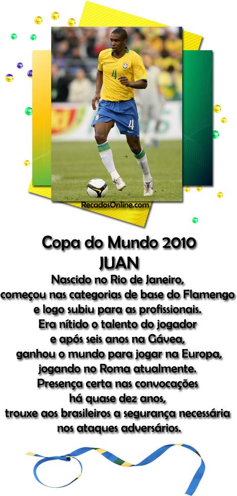 Seleção Brasileira Copa 2010 Imagem 5
