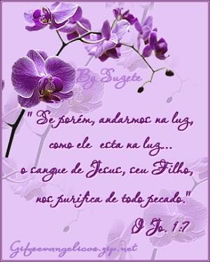 Trechos da Bíblia Imagem 1
