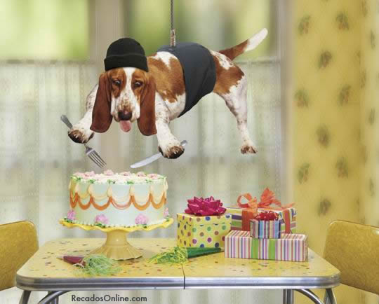 Feliz Aniversário Engraçado Imagem 2