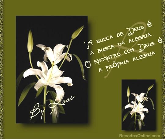 A busca de Deus é a busca da alegria. O encontro com Deus é a própria alegria.