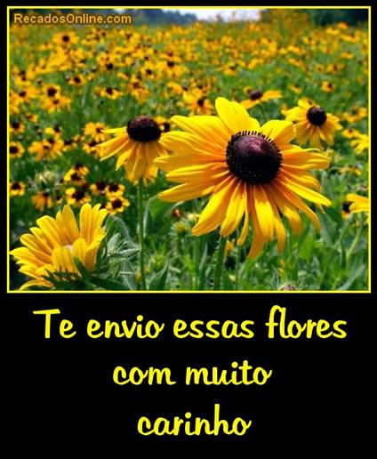 Flores imagem #31151
