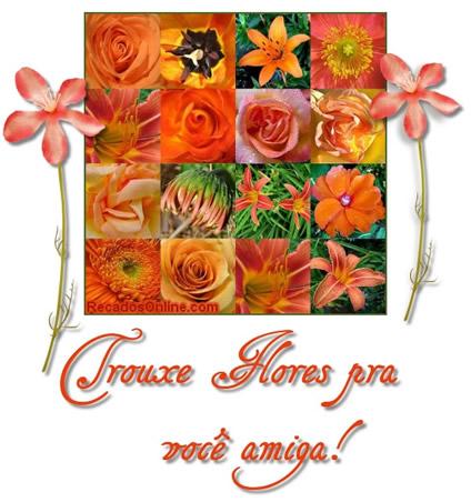 Trouxe flores pra você...