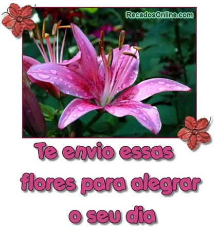Te envio essas flores para alegrar o seu...