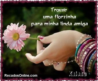 Flores imagem 4