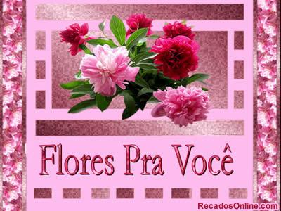 Flores Imagem 8