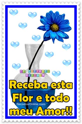 Flores Imagem 6