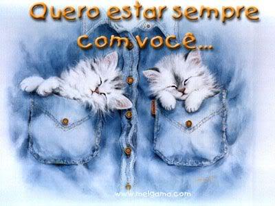 Gatinhos Imagem 2