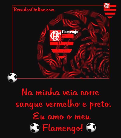 Flamengo Imagem 5