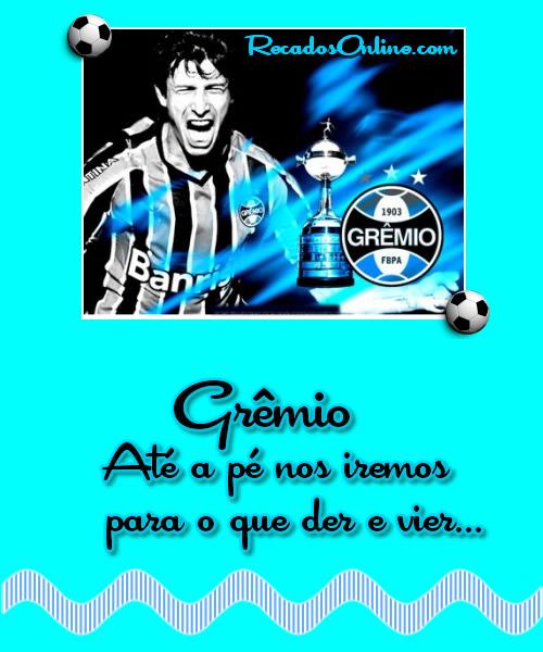 Grêmio Imagem 5