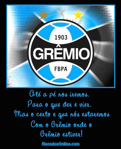 Grêmio Imagem 9