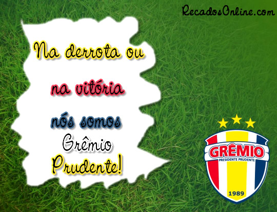 Grêmio Barueri imagem 1