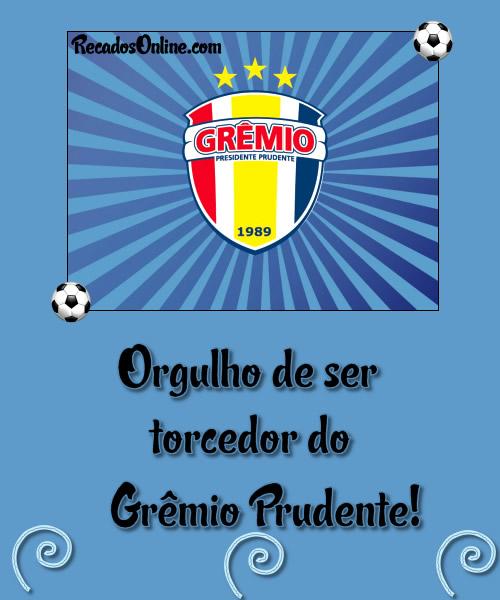 Grêmio Barueri imagem 3