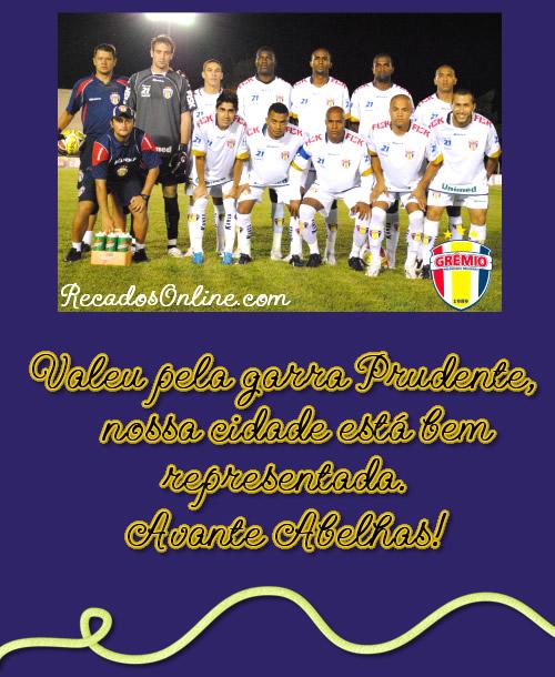 Grêmio Barueri imagem 5
