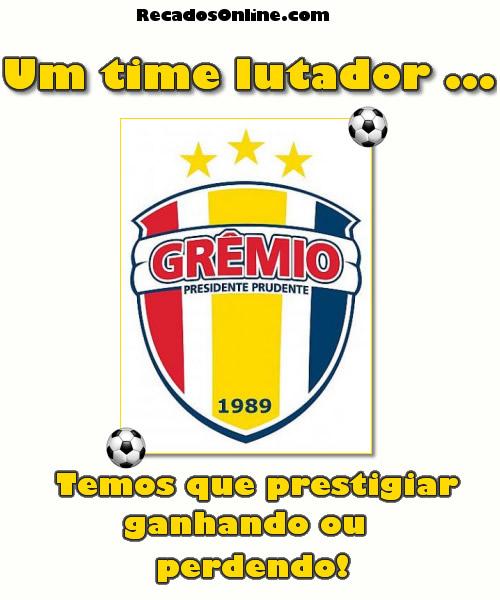 Grêmio Barueri imagem 6