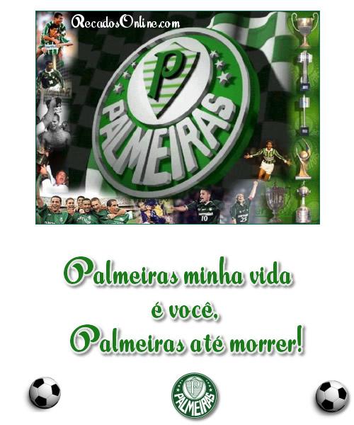 Palmeiras imagem 2