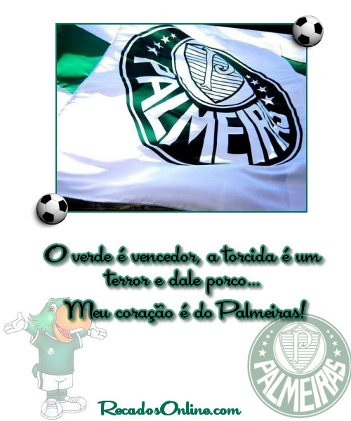 Palmeiras imagem 8