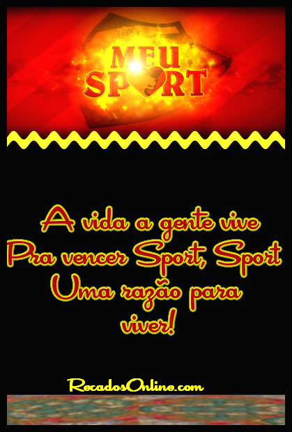 Sport Recife imagem 5