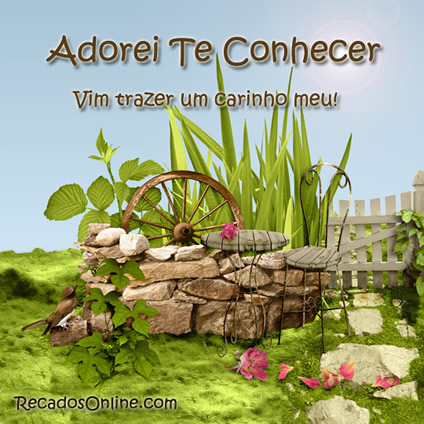 Adorei Te Conhecer Imagem 6