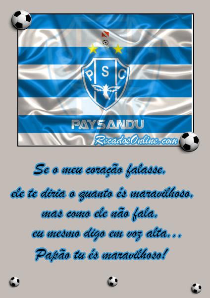 Paysandu imagem 7
