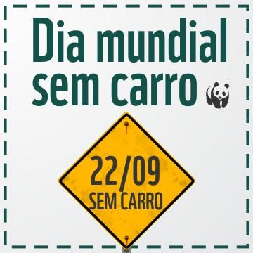 Dia Mundial Sem Carro Imagem 10