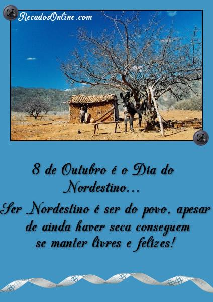 8 de Outubro é o Dia do Nordestino... Ser nordestino é ser do povo, apesar de ainda haver seca conseguem se manter livres e...