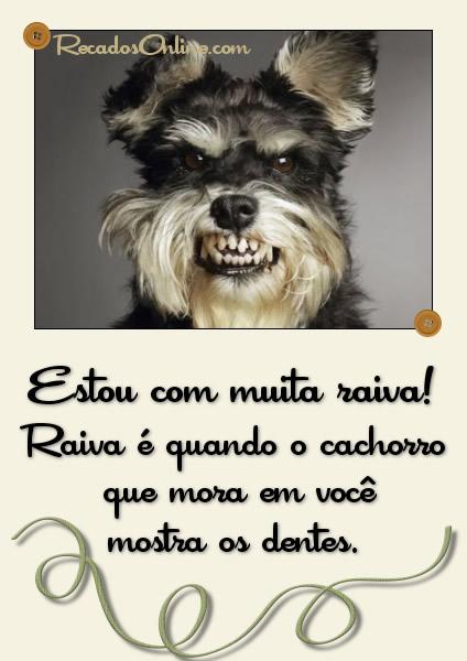 Raiva Imagem 1