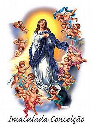 Dia da Imaculada Conceição imagem 9