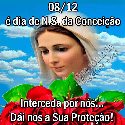 08/12 é Dia de Nossa Senhora Imaculada Conceição Interceda por nós... Dai-nos a sua proteção!