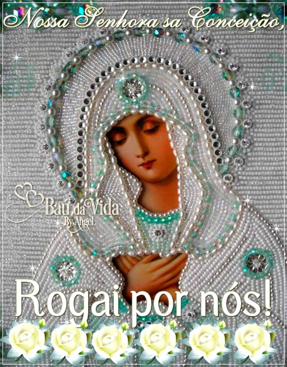 Dia da Imaculada Conceição imagem 2