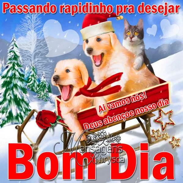 Bom Dia Natal Imagem 1