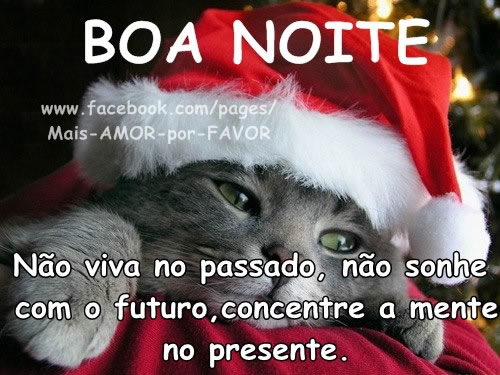 Boa Noite Natal Imagem 6