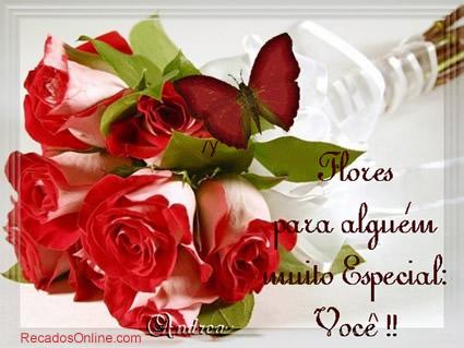 Rosas Imagem 2