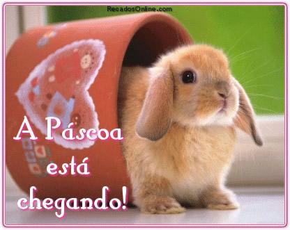 A Páscoa está...