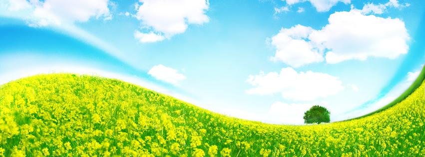 Capa para Facebook com paisagem de colina verde com céu...