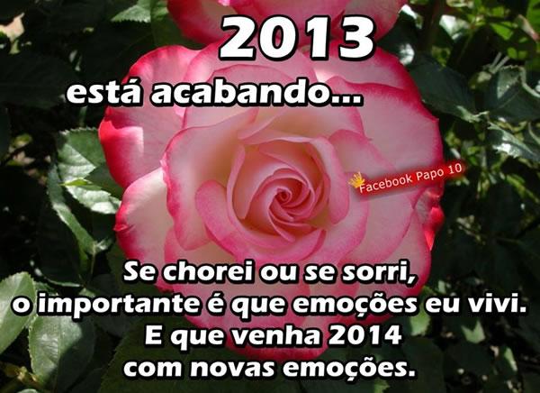 2013 está acabando... Se chorei ou se sorri, o importante é que emoções eu vivi. E que venha 2014 com novas emoções.