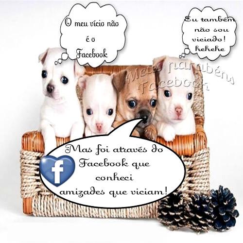 Amigos do Facebook imagem 8