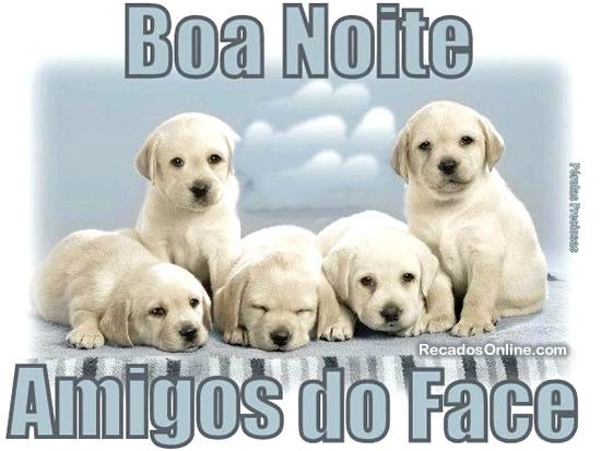 Boa Noite Amigos Do Facebook! Tenham Todos, Uma Abençoada