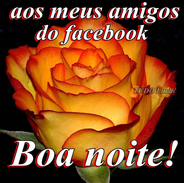 Aos meus amigos do facebook Boa noite!