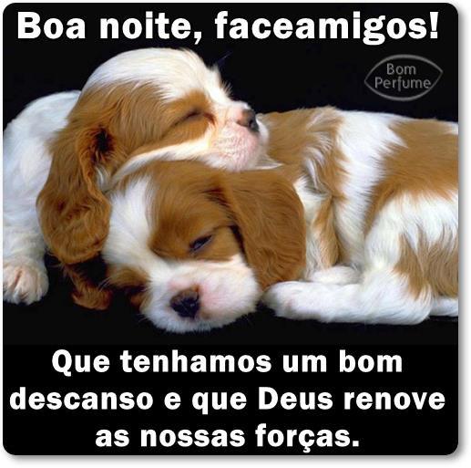 Boa Noite Facebook Imagem 9