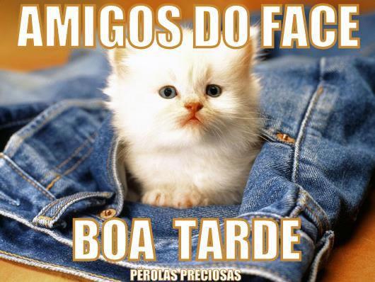 Imagens De Boa Tarde: Imagens E Mensagens Para Facebook