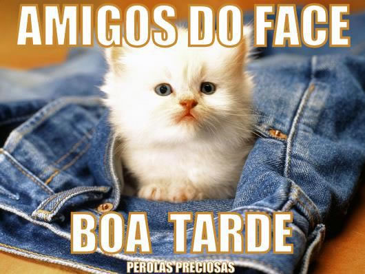 Boa Tarde Facebook Imagem 6