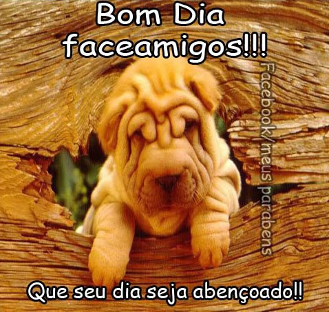 Bom Dia Facebook Imagem 6
