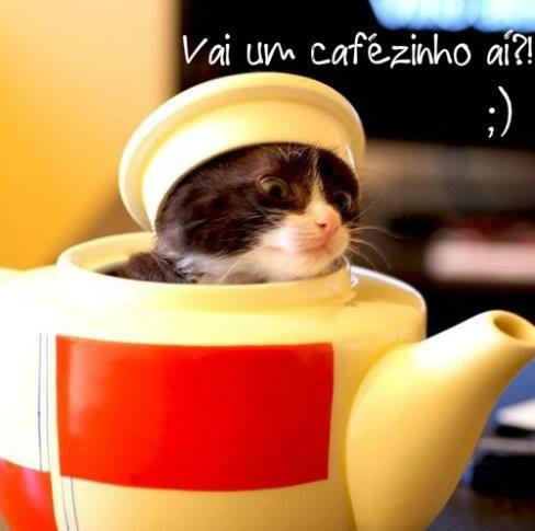 Café Imagem 2