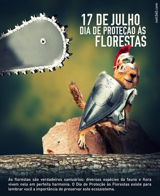 Dia de Proteção às Florestas imagem 8