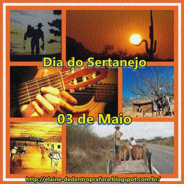 Dia do Sertanejo Imagem 4