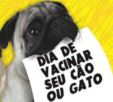 Dia Mundial Contra a Raiva - Imagens, Mensagens e Frases para WhatsApp