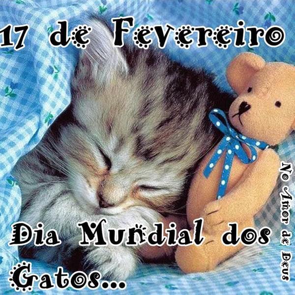 Dia Mundial do Gato Imagem 2
