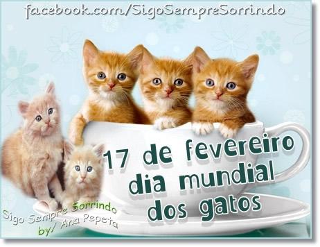 Dia Mundial do Gato Imagem 7