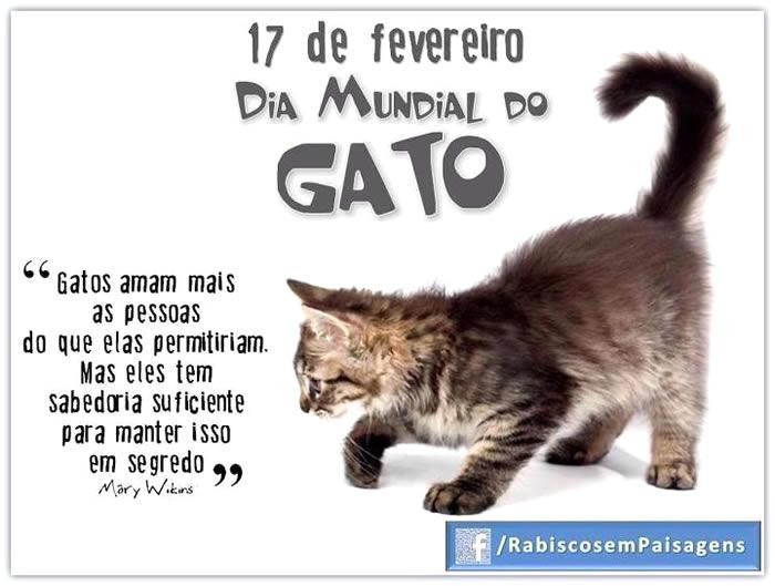 Dia Mundial do Gato Imagem 9